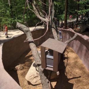 Sloth enclosure (US)